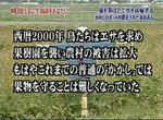 kakashi002.jpg
